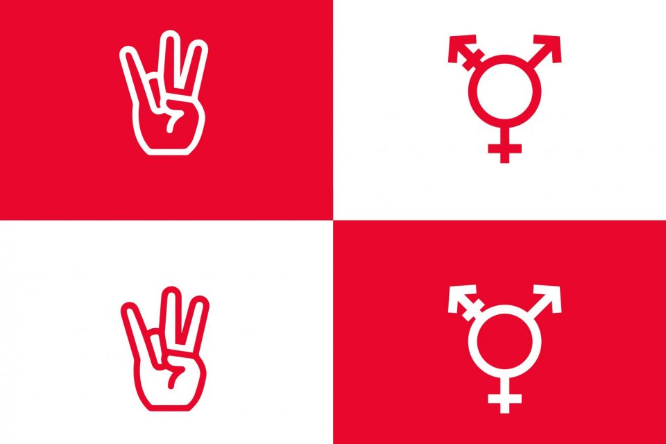 University of Houston's First Transgender and Non-Binary Studies Course